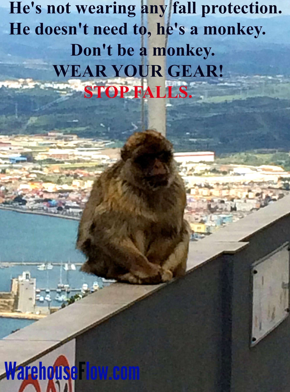 monkeyfallgearposter